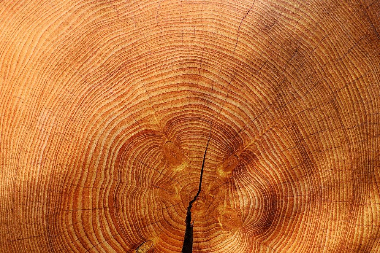 Wat is vuren hout en waarvoor kan het gebruikt worden?