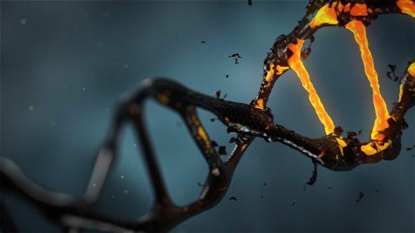 5 redenen om DNA te testen