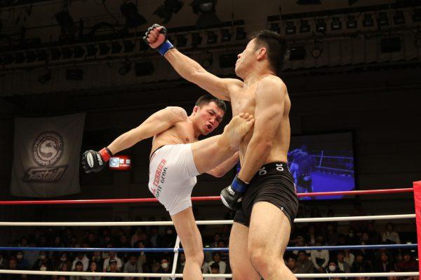 Welke soorten vechtsporten zijn er en waar staan ze om bekend?